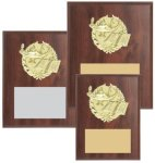 Cherry Finished Sports Plaque with GOLD Figure Coach Trophy Awards