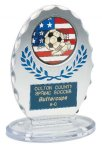 Clear & Blue Standing Oval Sculpted Ice Award Economy Acrylic Awards