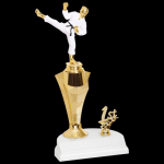 Rising Star Martial Arts Karate Trophy Figure with a Riser Trophies