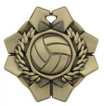 Imperial Volleyball Medals Imperial Medal Awards