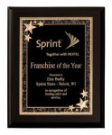 Matte Black Finish Starburst Plaque Award Sales Awards