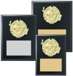 Black Finished Sports Plaque with GOLD Figure Volleyball Trophy Awards