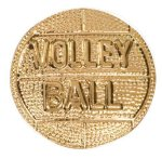 Gold Volleyball Metal Chenille Letter Insignia Volleyball Trophy Awards